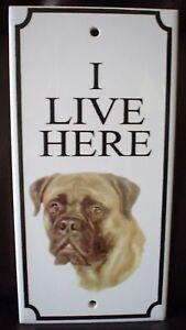Lovely-Mastiff-034-I-Live-Here-034-Ceramic-Plaque