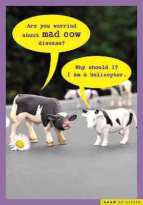 Worried About Mad Cow Funny Birthday Card Land Of Little Humour Cards