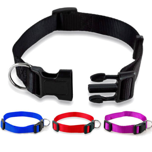 Adjustable Durable Nylon Pet Dog Solid Color Collar 11 Colors Puppy S-XL Solid