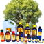 3ml-Essential-Oils-Many-Different-Oils-To-Choose-From-Buy-3-Get-1-Free thumbnail 18
