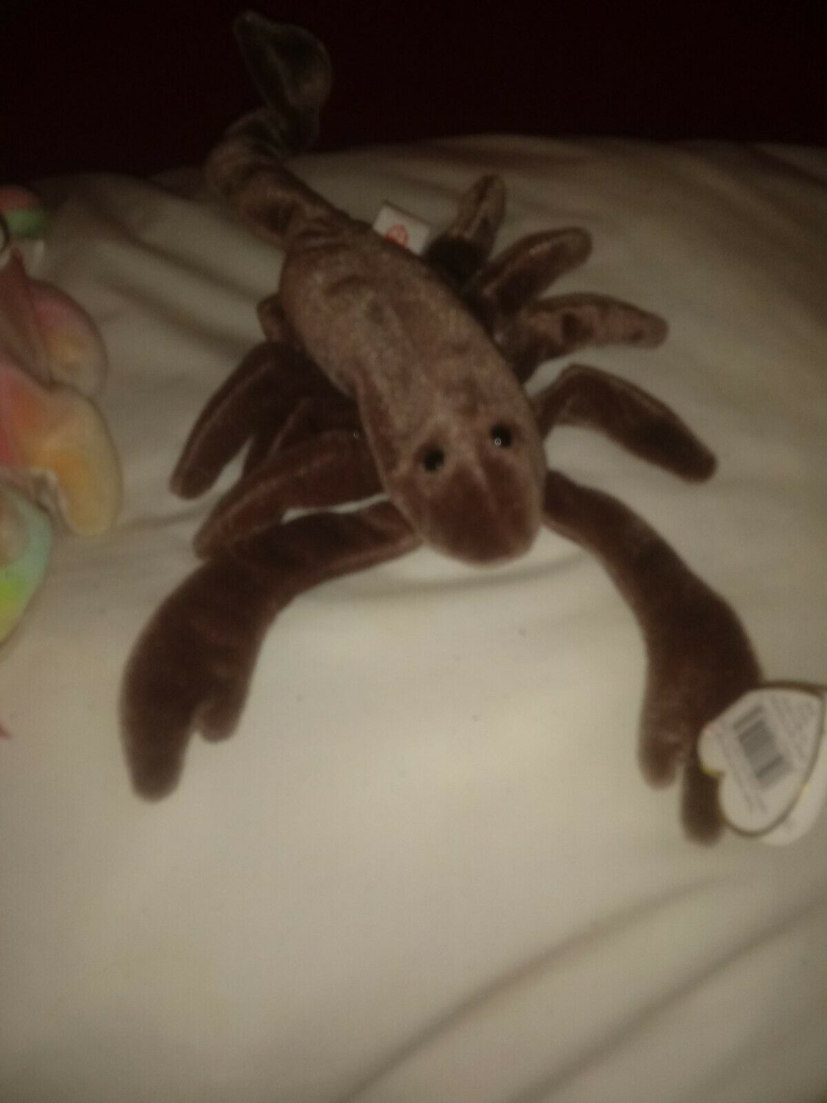 Ty RARE MINT CONDITION BEANIE BABIES PLUS MORE PHOTOS PHOTOS PHOTOS TO COME OF OTHERS 80e756