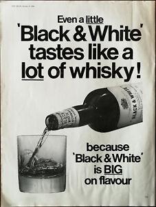 Black & White Scotch Whiskey Is Big On Flavour Vintage Advertisement 1966