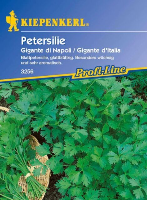 Kiepenkerl - glatte Petersilie * Gigante di Napoli * 3256 Blattpetersilie glatt