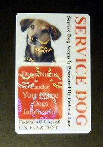 5491dbc74380 HOLOGRAM SERVICE DOG / PET ID CARD BADGE FOR SERVICE ANIMAL ...