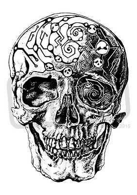 A7 'Detailed Skull' Unmounted Rubber Stamp (SP00007063)