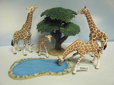 Schleich Giraffe female drinking