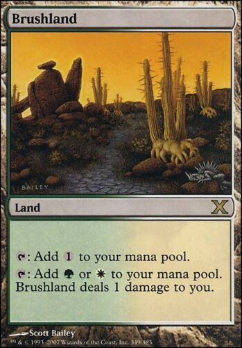 10th Ed x 1 Tenth Edition Magic the Gathering MTG 1x Brushland x1 LP//LP