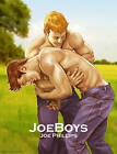 Joeboys by Joe Phillips (Hardback, 2015)