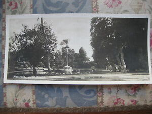 CPA-panoramique-Egypte-Alexandrie-jardin-Nouzha