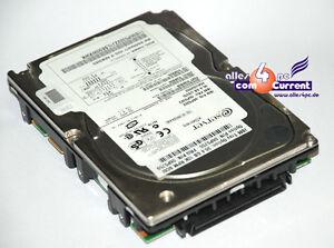 IBM-HDD-FESTPLATTE-36GB-SCSI-SCA-HOTPLUG-80-PIN-06P5322-SEAGATE-ST336605LC