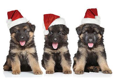 """Christmas Cards & Packs - """"Santa's Little Helpers"""" German Shepherd Alsatian pups"""
