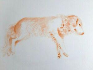 Janina-Ede-Original-Artwork-Drawing-A3-Golden-Retriever-Dog-Rescue-Charity-Sale