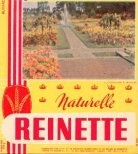 Buvard ancien 15x17 cm Naturelle Reinette bon etat gxqE8Q0P-09171622-799274875