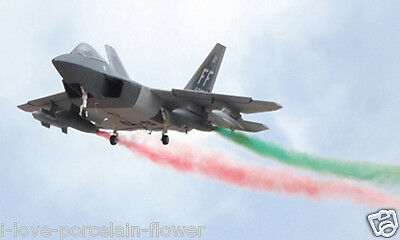 Twin Metal EDF Huge Scale 1.51M RC F22 Raptor RTF Airplane Model Versatility