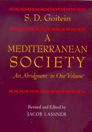 A Mediterranean Society by S D Goitein: Used