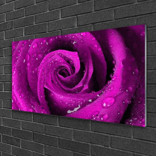 Glasbilder 100x50 Wandbild Druck auf Glas Rose Pflanzen
