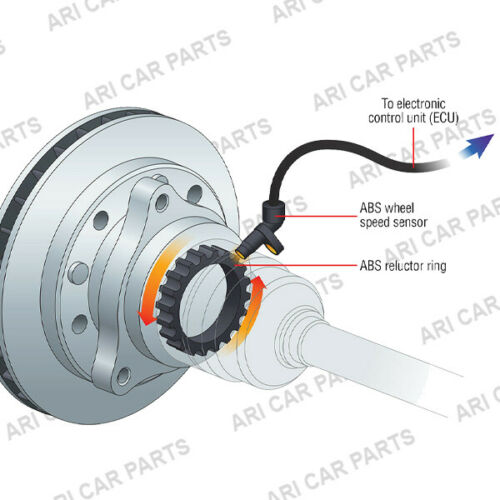 REAR ABS RING /&  ABS SPEED SENSOR /& AXLE NUT FOR BMW X3 E83 04-15