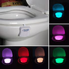 LED 8 Color Night Light Body Motion Sensor Automatic Toilet Seat Bowl Bathroom
