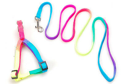Rainbow Colorful Pet Dog Pubby Nylon Harness with Leash Puppy lead Collar