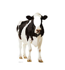 COW - LIFE SIZE STAND-IN/CUTOUT BRAND NEW - PARTY 2300