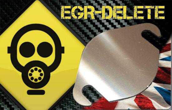 EGR blanking plate Ford Transit  2.0 2.2 2.4 TDCI PERFORMANCE BHP MPG Diesel