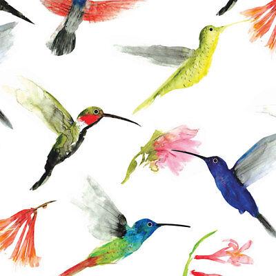Hummingbirds Print Tissue Paper Multi Listing 500x750mm
