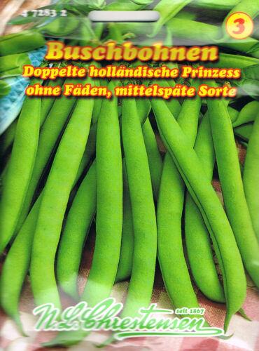ohne Fäden,Bohne  472832 Buschbohnen /'Doppelte holländische Prinzess/' grün