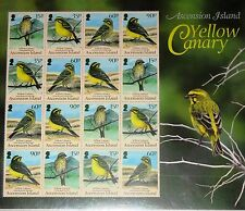ASCENSION 2010 1118-21 Zd Sheet Gelbbauchgirlitz Yellow Canary Birds Vögel MNH