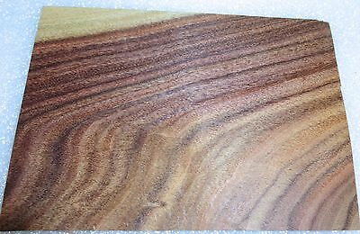"Rosewood South American Santos wood veneer 3/"" x 4/"" raw no backer  1//42/"" thick"