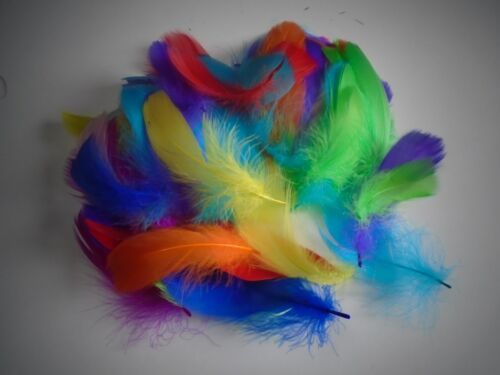 lot de 100 plumes oie multicolore 5 a 8 cm