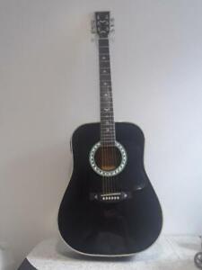 esteban american legacy turquoise black guitar package ebay. Black Bedroom Furniture Sets. Home Design Ideas