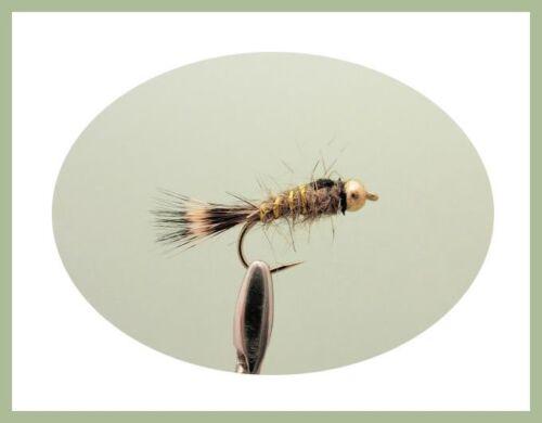 TESTA D/'ORO Lepri Ear Trote Mosche taglia 10//12 Standard /& Arancione Colletto confezione da 12