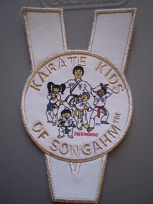 Tiny Tigers Of Songahm Taekwondo Patch  Silver edges NEW