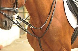 zügel pferd