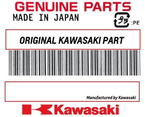 CHECK VALVE 92055-1059 NOS O RING KAWASAKI