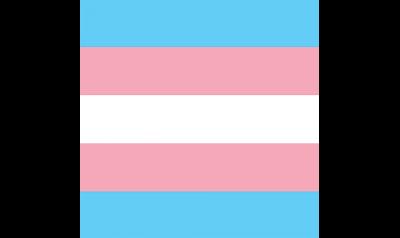 """Disciplinato Bandana Transgender 21 X 21"""" - Gay Pride Festival Headwear Celebrazione Lgbt-"""