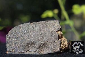 NWA-6868-LL6-Recrystallized-Chondrite-Breccia-Meteorite-41-4-gram-partial-cut