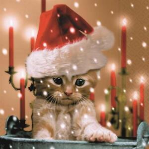 20 Servietten Sleepy Cat Vertraumte Katze Weihnachten Tischdeko