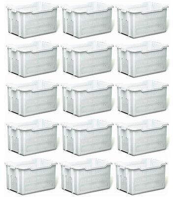 15pz Cesta Pane Transport Container Duraflex Bianca Forata 50x40cm X H 30cm 50kg Acquista Ora