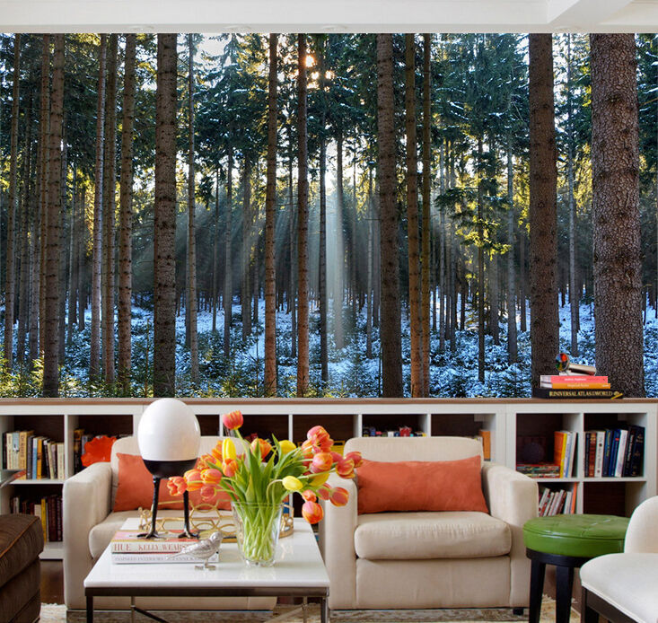3D sunlight forest trunk 756 Wall Paper Print Decal Wall Deco Indoor wall Mural