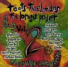 The Brasil Project, Vol. 2 by Toots Thielemans (CD, Jul-1993, Private Music)