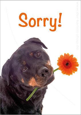 DIN A6 Postkarte Grußkarte Karte Entschuldigungskarte Entschuldigung Sorry