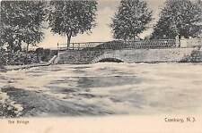 C18/ Cranbury New Jersey NJ Postcard c1910 The Bridge High Water