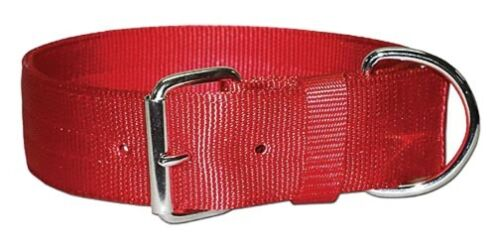 "Pitbull Type Dog Collar 2"" Yard Collar Pig Bull Terrier Dog Red"
