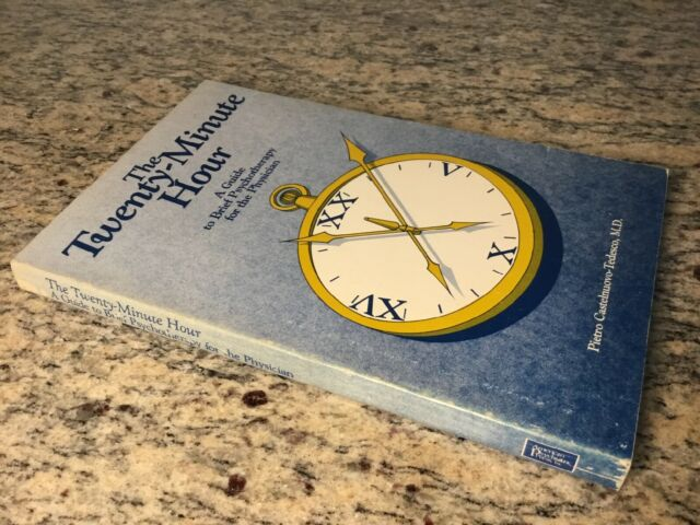 1986 The Twenty Minute Hour Guide to Brief Psychotherapy for Physican Softcover