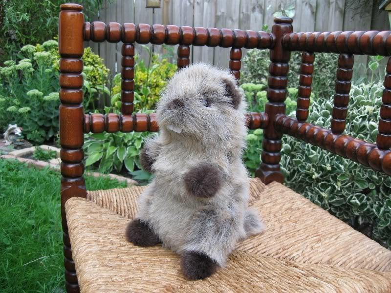 L Dake Holland Stuffed Beaver Plush 9 Inch