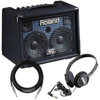 Roland Kc-110 Stereo Keyboard Amplifier Amp Pak