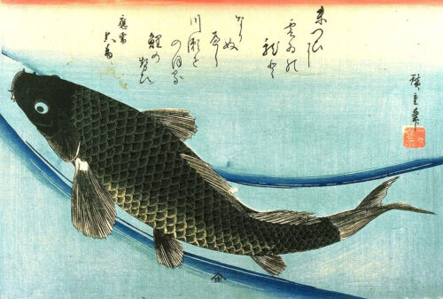 Repro Japanese Woodblock Print by Ando Hiroshige /'Koi/'