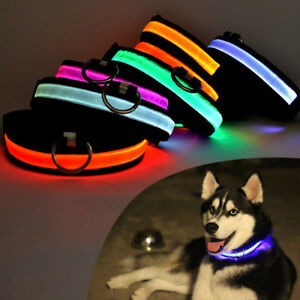 USB-Rechargeable-Pet-Collar-LED-Light-Flashing-Band-Nylon-Dog-Cat-Safety-Belt