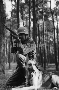 WW2-Photo-Picture-German-Soldier-firing-k98-Rifle-with-Shepherd-Dog-271